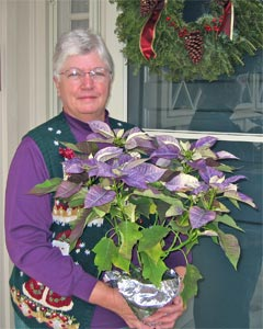 Nell with poinsettia